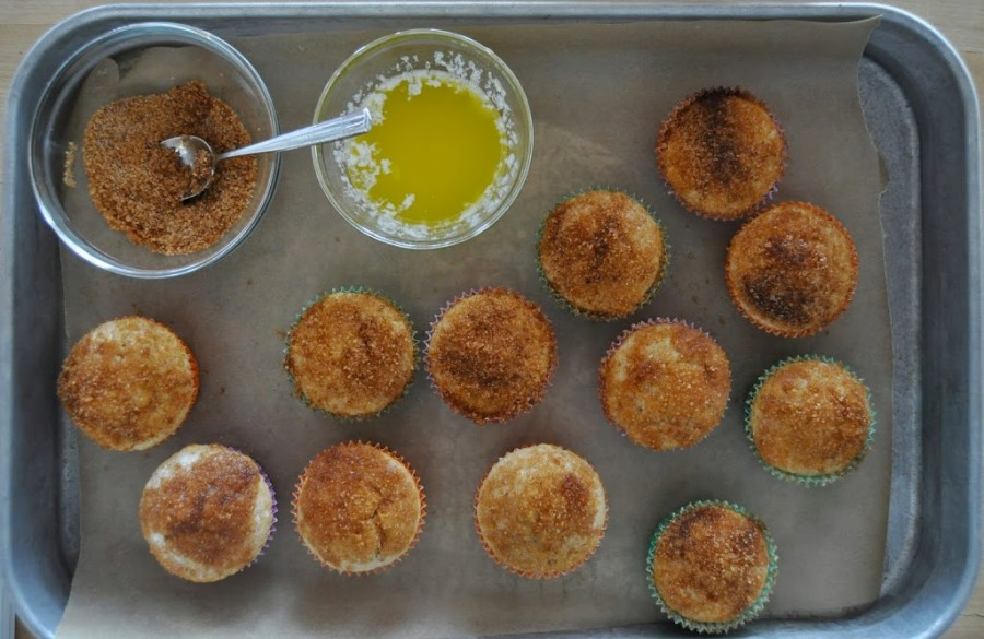 Gluten Free Cinnamon Sugar Doughnut Muffins